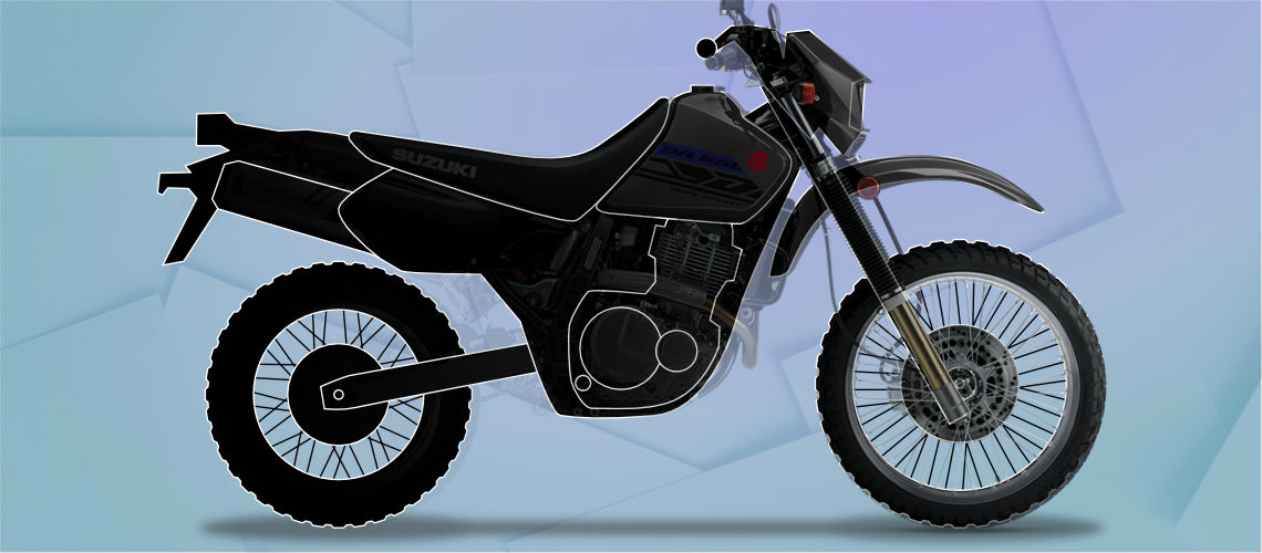 Motorcycle types: Dual Sport
